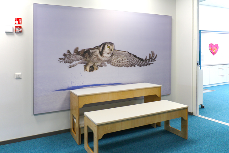 AKUprintti for Linnukan koulu Liminka - custom owl print